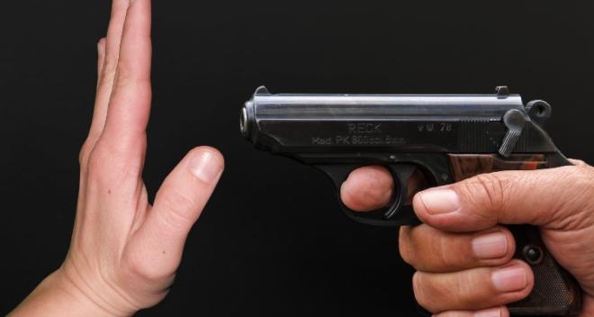 lei do desarmamento